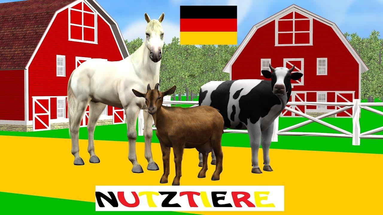 nutztiere die namen der tiere haustieren wir lernen deutsch german akademie. Black Bedroom Furniture Sets. Home Design Ideas
