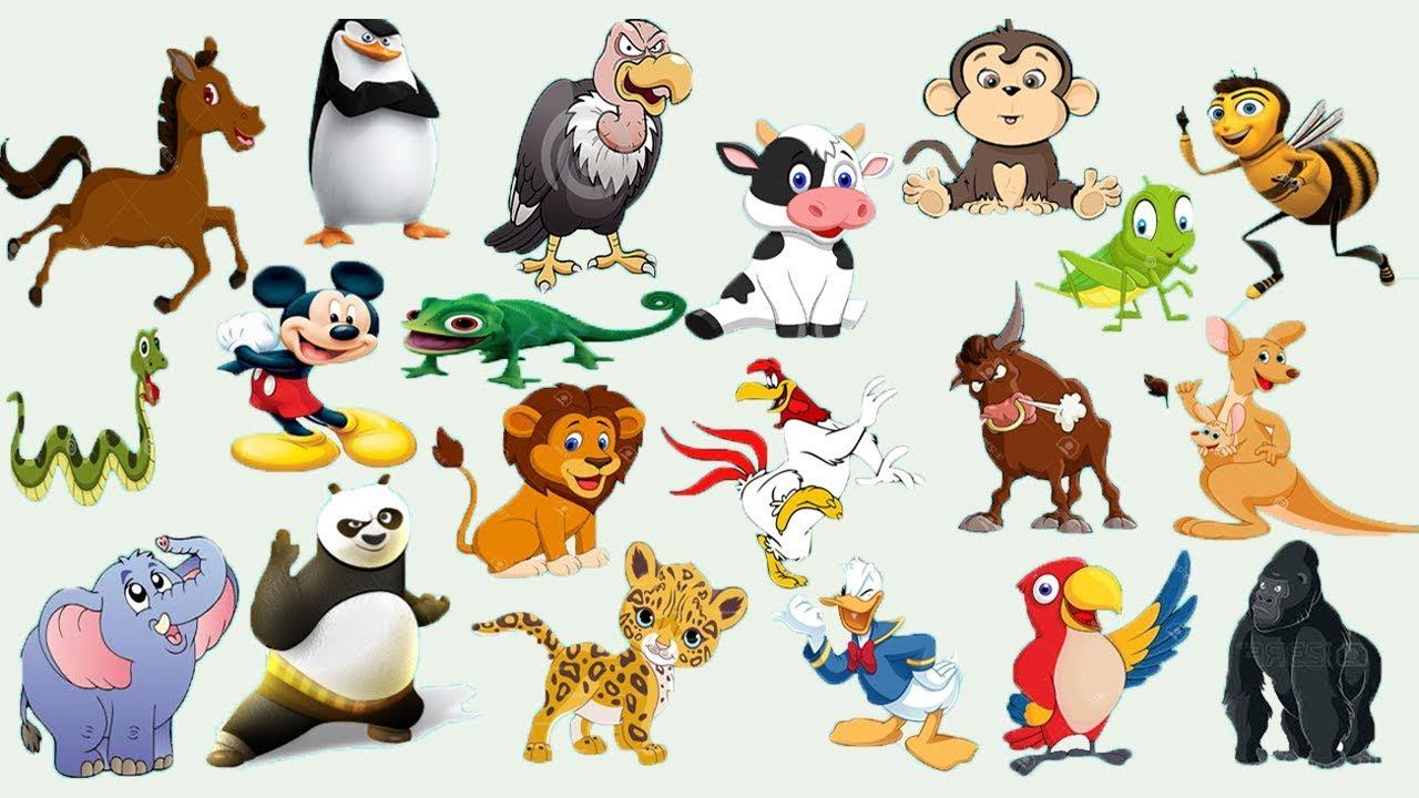 Tiere Für Kinder